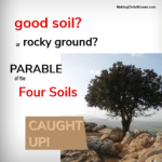good soil or rocky ground